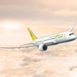 Flight Extension