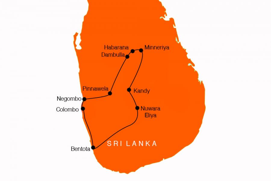 10 Day Taste of Sri Lanka