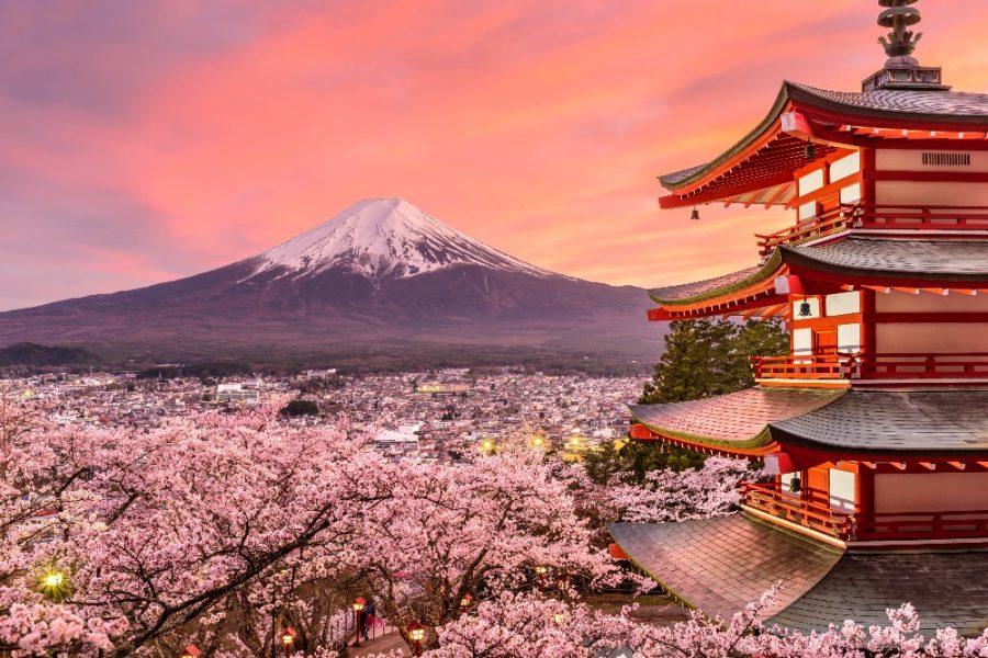 japan tour deals MyHoliday2