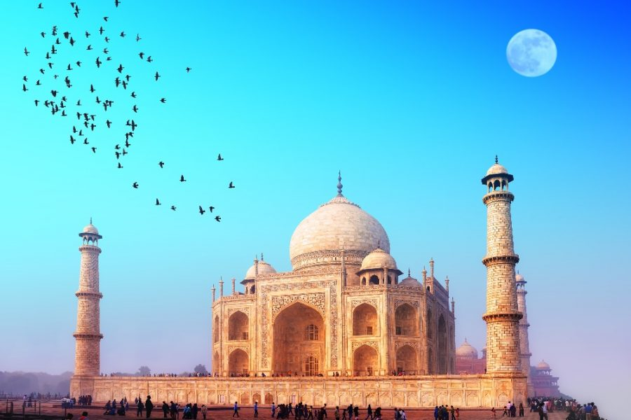 8 day Golden Triangle Tour