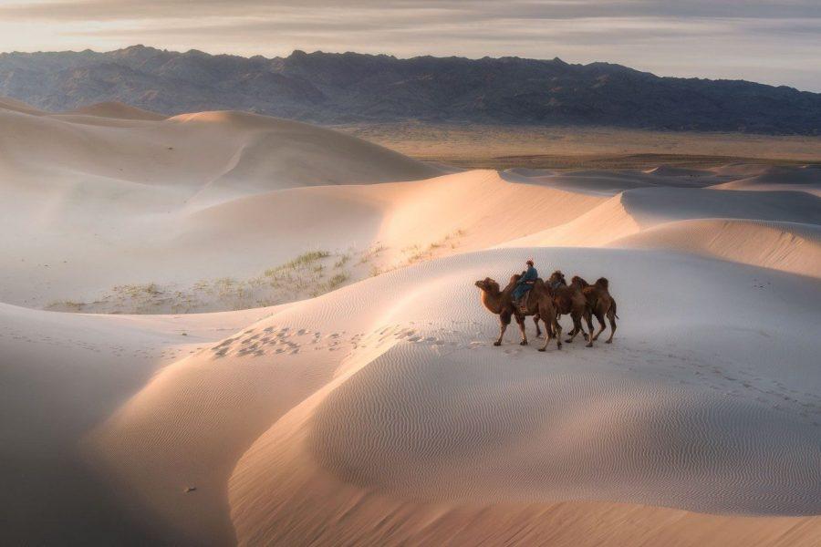 gobi desert myholiday2