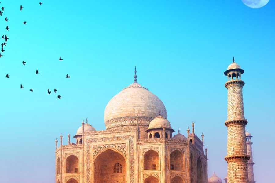 india tours myholiday2