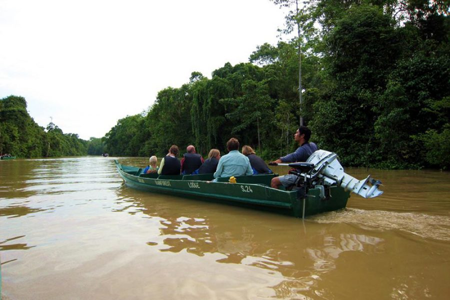 river-cruise-on-the-kinabatangan-river-borneo_655746_l