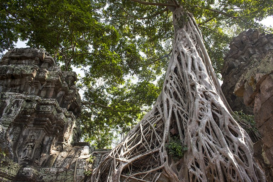 Cambodia tour package